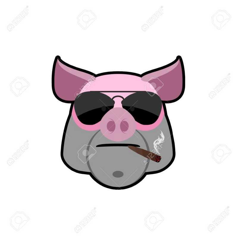 44010129-verro-arrabbiato-testa-di-maiale-con-gli-occhiali-e-una-sigaretta-fattoria-degli-animali--un-bullo-lo.jpg